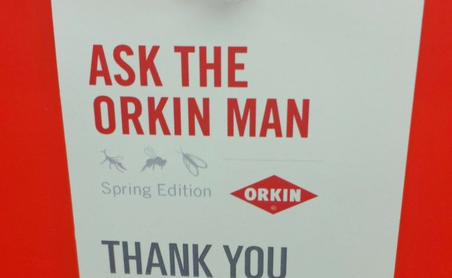 5 Ways To Keep Bugs AWAY When You Travel #learnwithorkin