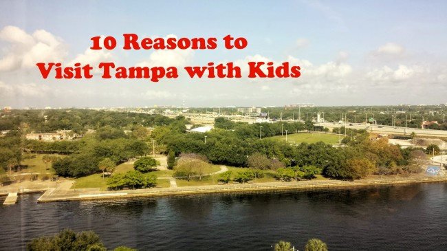 10 reasons to visit Tampa with kids