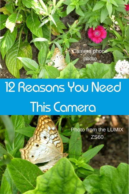 Check out these 12 reasons you need the LUMIX ZS60 digital camera. No, your camera phone is not good enough.
