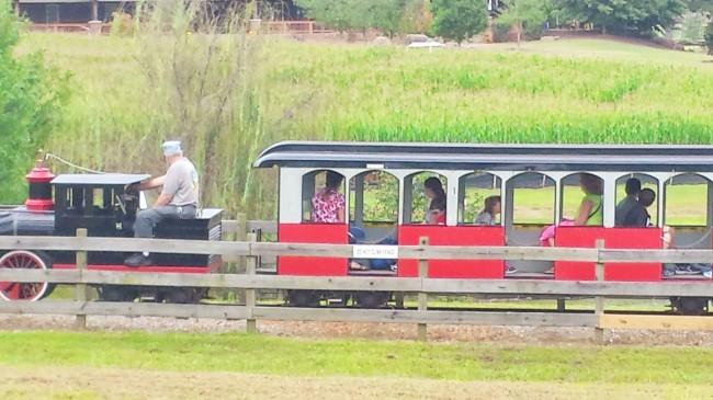 Train at The Rock Ranch
