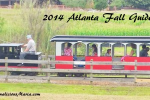 Atlanta's Best Apple Orchards, Pumpkin Patches & Other Fall activities