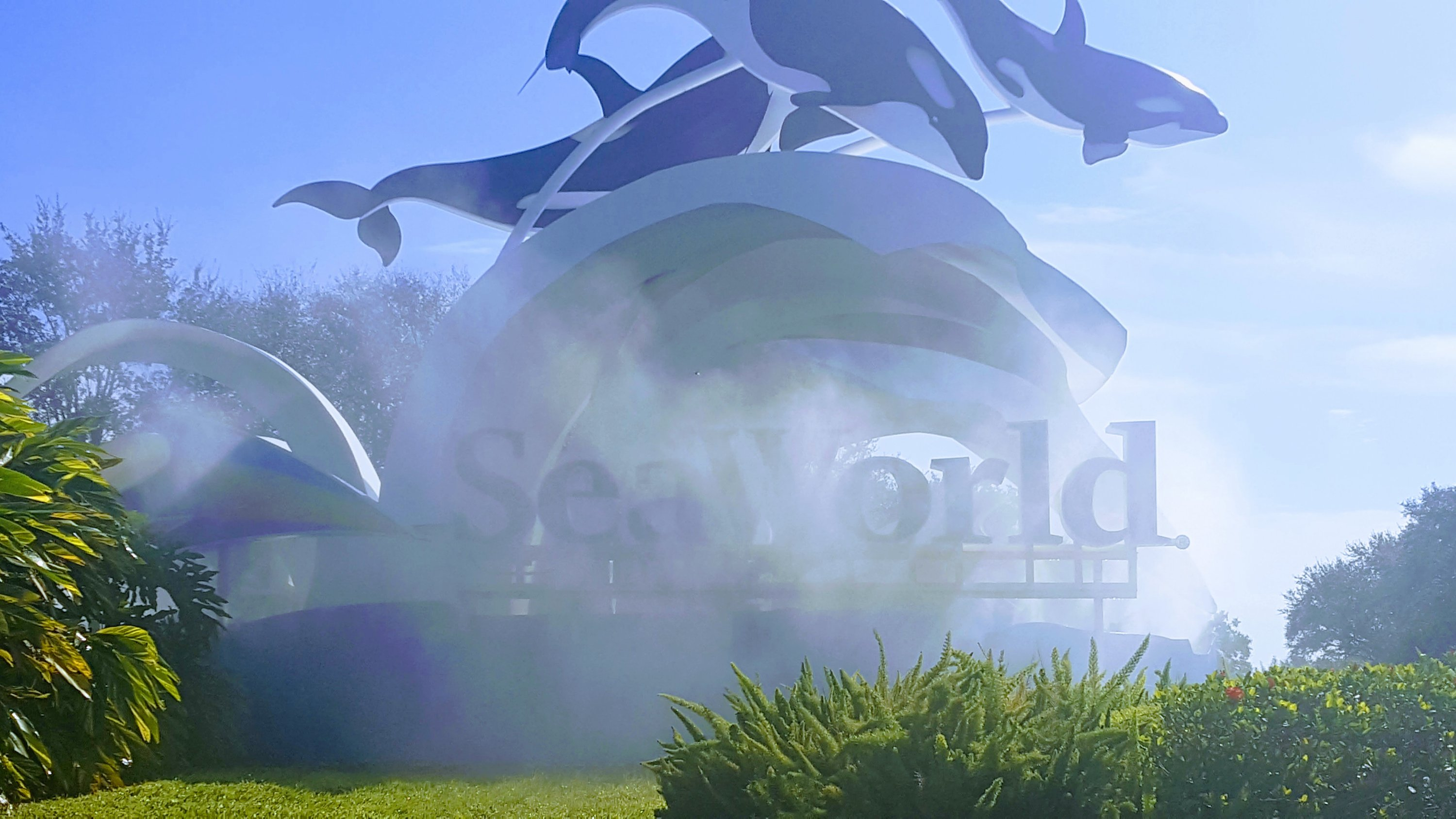 Cyber Monday travel deals include buy one get one free at Seaworld!